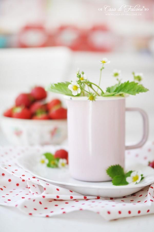 Ombre Erdbeer-Popsicles {Rezept}