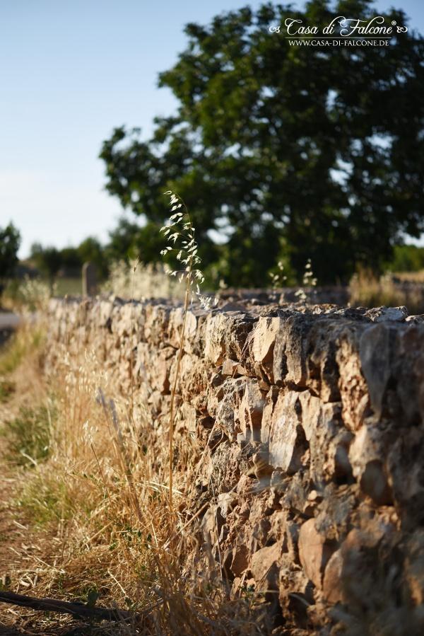 Bella Italia I Apulien I Casa di Falcone auf Reisen