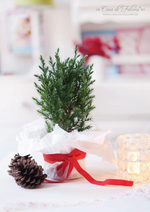 Weihnachtsdeko I Casa di Falcone